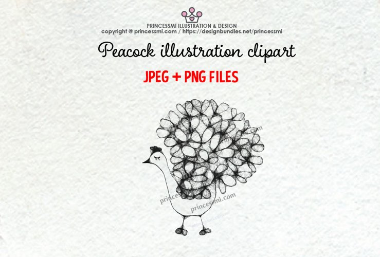 PEACOCK illustration clipart