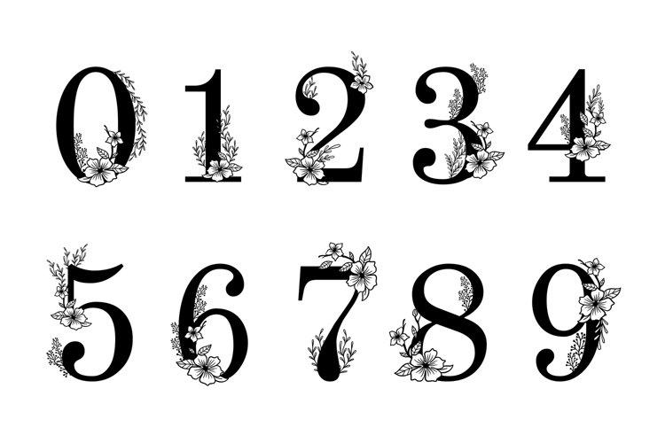 Flower ornate numbers. Elegant blossom number, floral sprigs example image 1