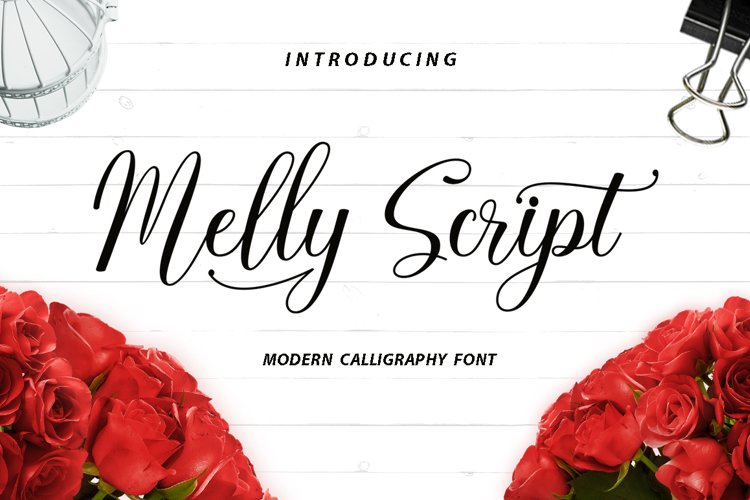 Melly Script example image 1