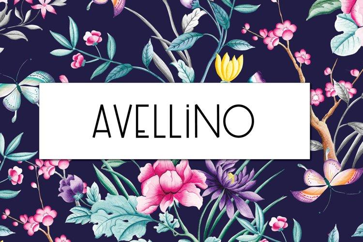 Avellino   Multilingual Sans Serif example image 1