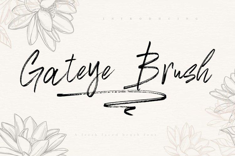 Gateye Brush Font example image 1