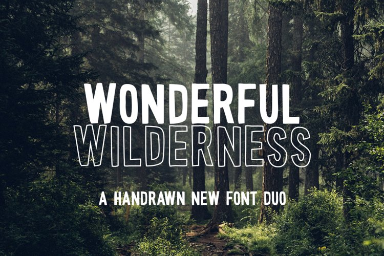 Wonderful Wilderness Font Duo example image 1