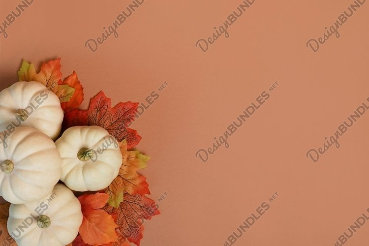 Autumn maple leaves with white Pumpkins on orange background example image 1