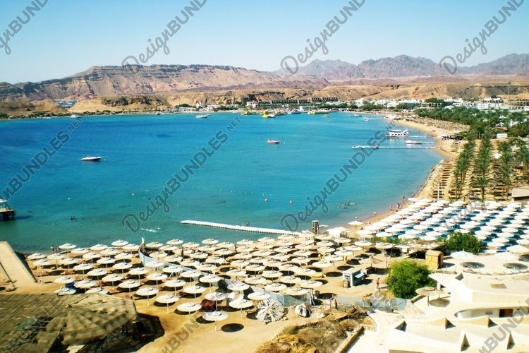 Red Sea in city Sharm el Sheikh. Egypt example image 1