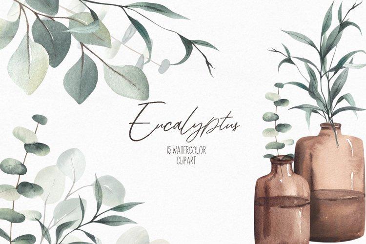 Watercolor Eucalyptus Clipart, Eucalyptus Greenery