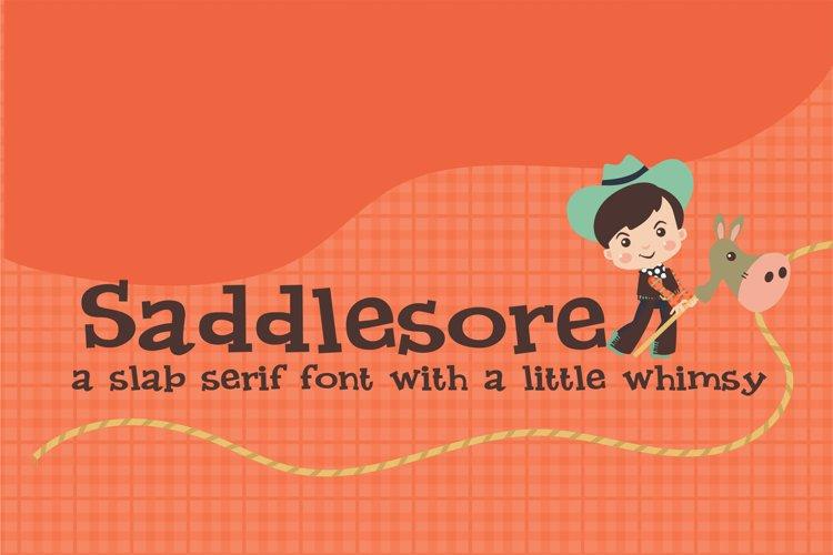 PN Saddlesore example image 1