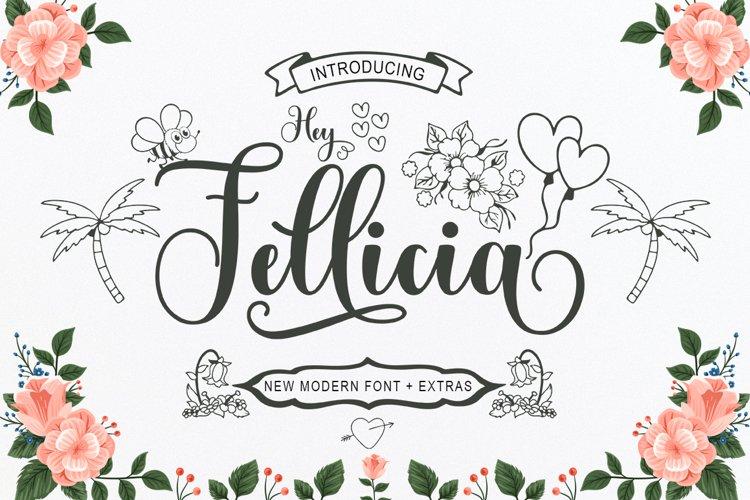 Hey Fellicia example image 1