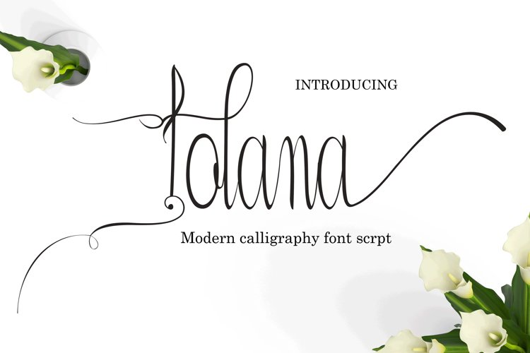 Iolana example image 1