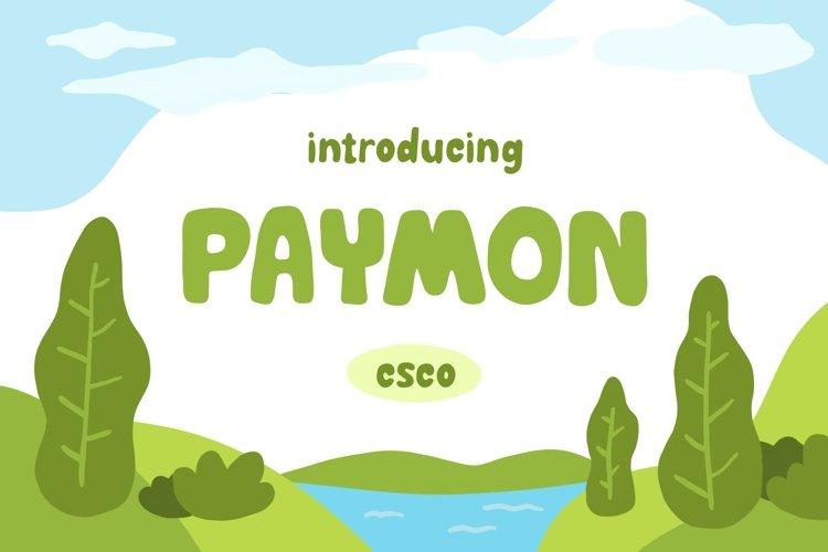 Paymon - Playful Display Font example image 1