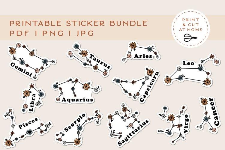 Floral Sticker Bundle   Flower Zodiac Printable Stickers example image 1