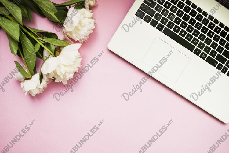 Laptop keyboard and white flowers, pink background.