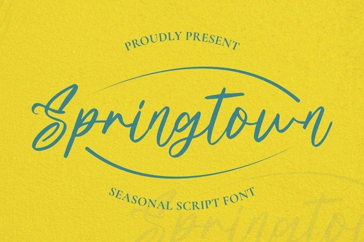 Web Font Springtown Font