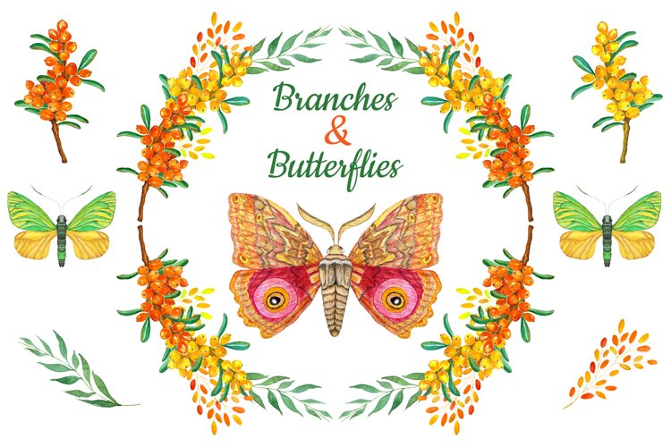 Branches & Butterflies...watercolor collection