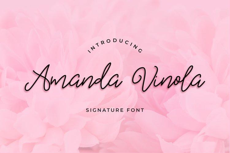 Amanda Vinola Handwritten Script Font example image 1
