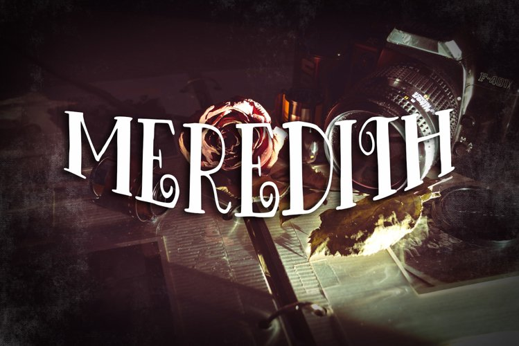 Meredith Vintage Font example image 1