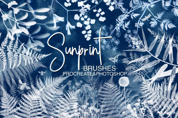 Sunprint Brushes for Procreate and Photoshop