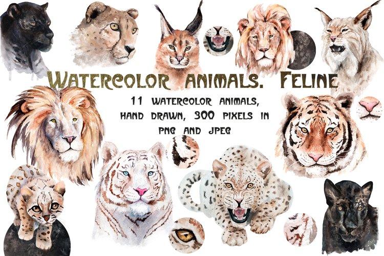 Watercolor realistic animals. Feline example image 1