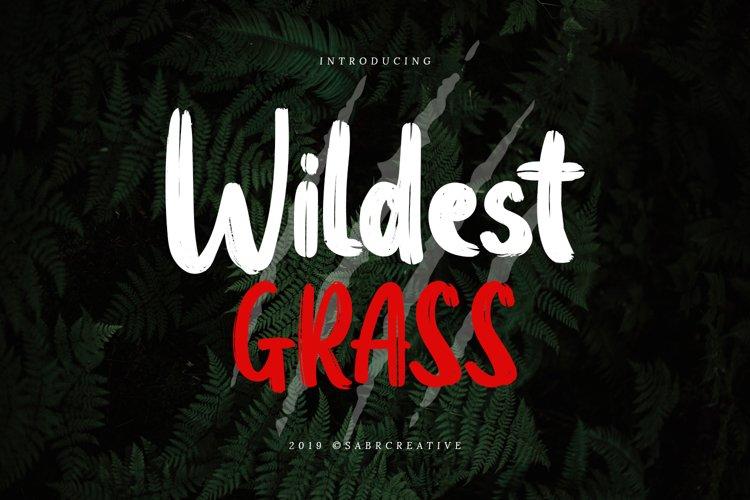Wildest Grass example image 1