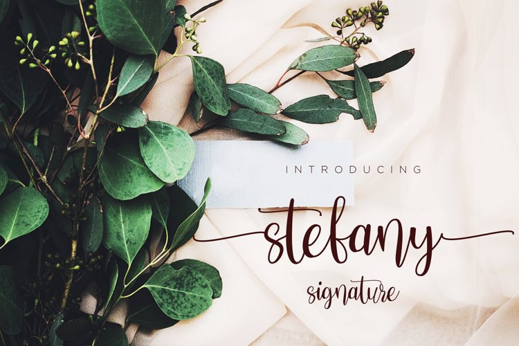 Stefany Signature font example image 1
