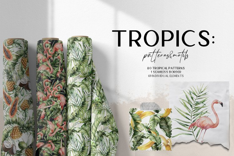 Tropics. Tropical leaves patterns and motifs. Tropical birds example image 1