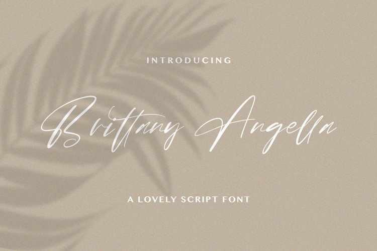 Brittany Angella - Lovely Script Font example image 1