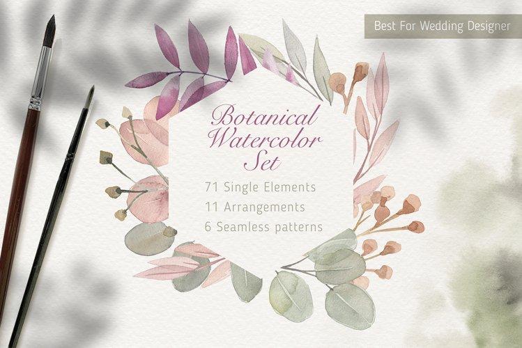 Botanical Harmonious Watercolor Set