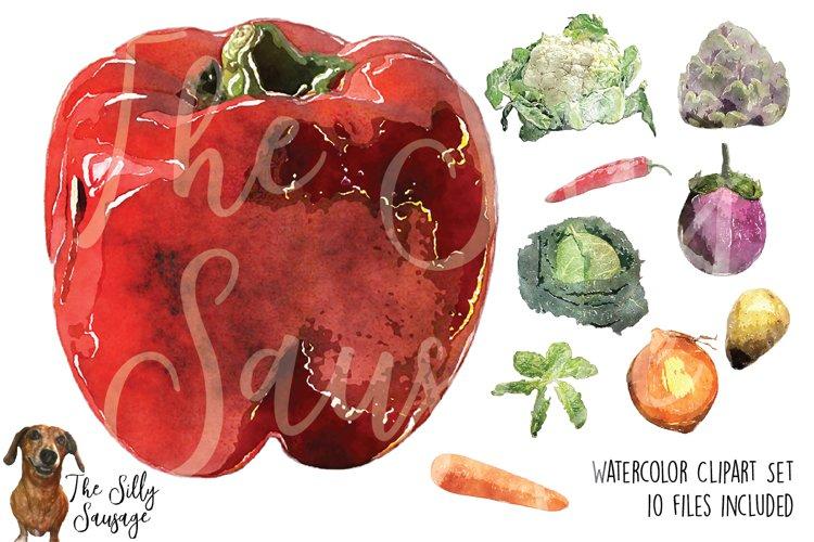 Garden Veggies Watercolor Clipart