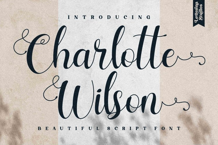 Charlotte Wilson - Beautiful Script Font example image 1
