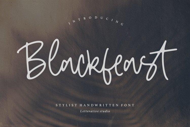 BlackfeastStylist Handwritten Font example image 1