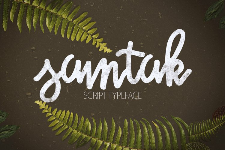 Samtak Script example image 1