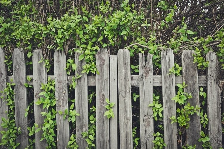 Old wooden fence example image 1
