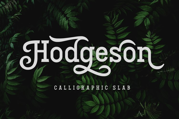 Hodgeson example image 1