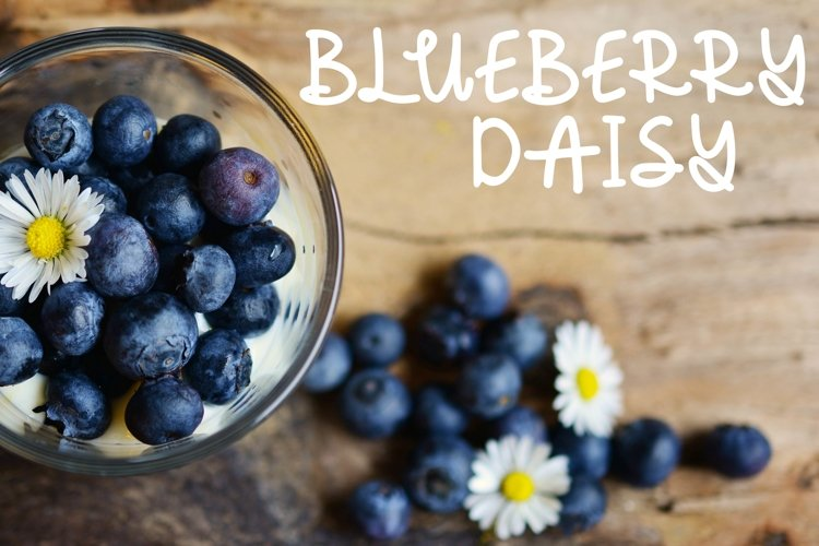 Blueberry Daisy: A Fun Handwritten Font example image 1