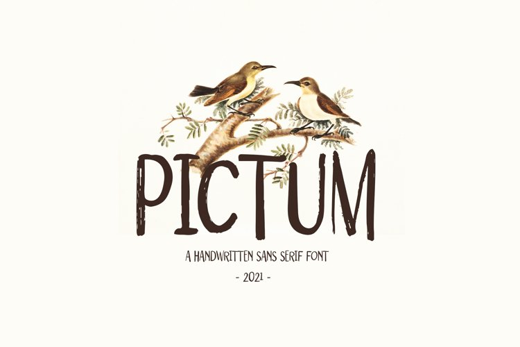 Pictum - Handwritten example image 1