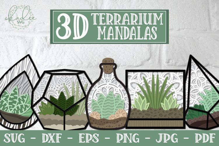 3D Terrarium Mandalas SVG Bundle, Succulent SVG, 3D Mandala example image 1