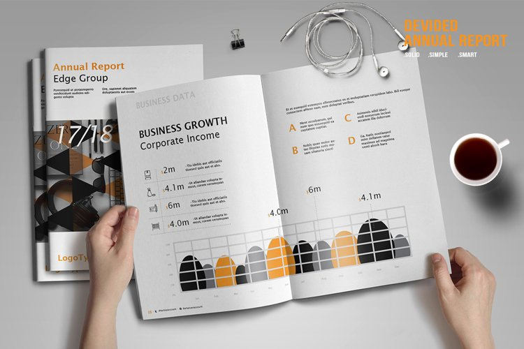 Devided Annual Report Template example image 1