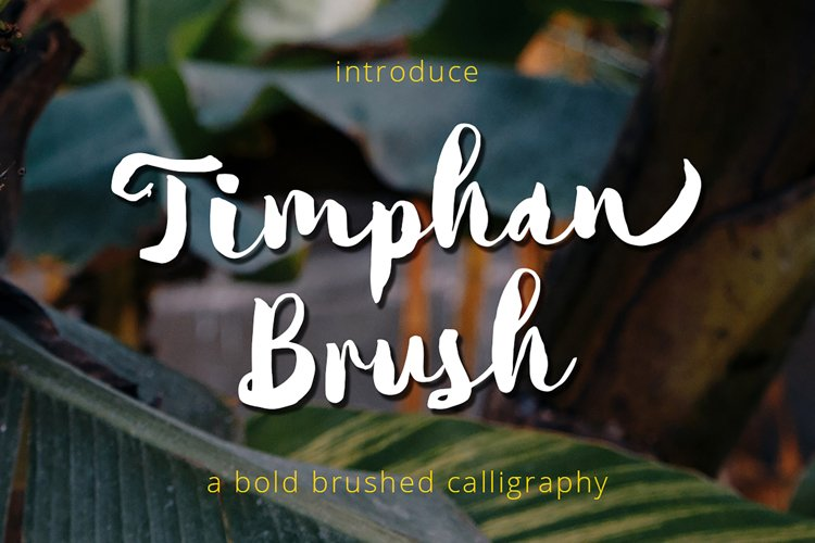 Timphan - A Fonts For Titles! example image 1