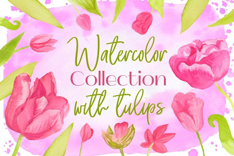 Collection with Watercolor pink tulips.Png Clip Art flowers.