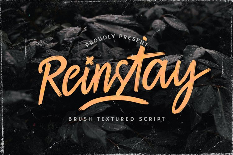 Reinstay - Brush Textured Script Font example image 1