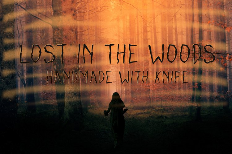 Lost in the woods example image 1