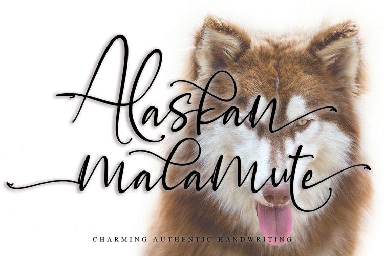 Alaskan malamute example image 1