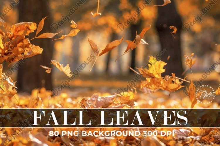 Overlays Fall Leaves example image 1