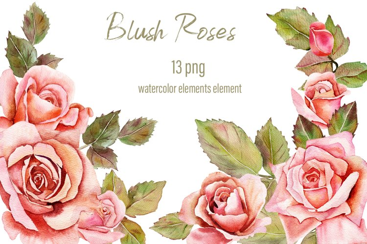 Pink Blush Watercolor Floral Clipart Separate Elements PNG