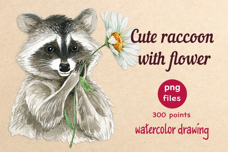 cute raccoon with white chamomile flower