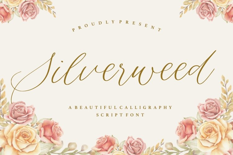 Silverweed Beautiful Calligraphy Script Font example image 1