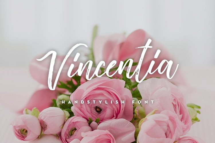 Vincentia Handstylish Font example image 1