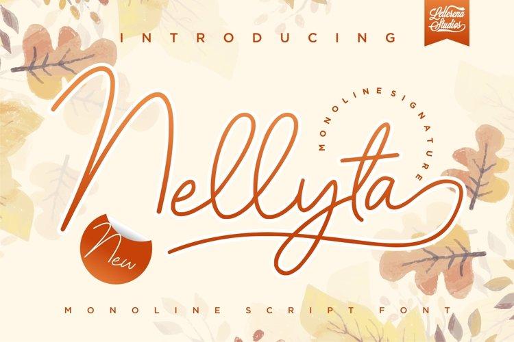 Nellyta - Minimalist and Monoline Font example image 1