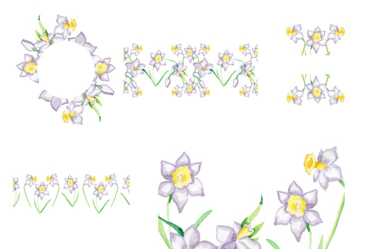 Daffodil Flower Frames