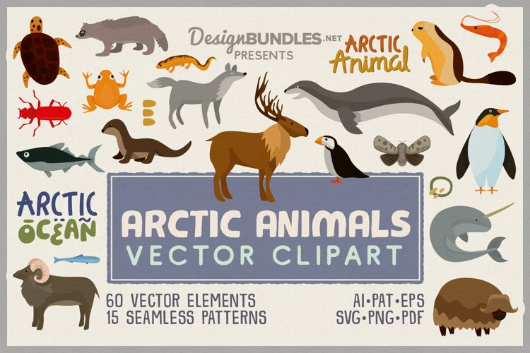 Arctic Animals Vector Clipart and Seamless Pattern