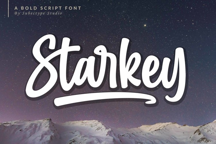 Starkey - Bold Script Font example image 1